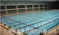 游泳池水质维护服务 FW-01