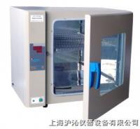 电热恒温培养箱/恒温培养箱/DH3600 DH3600