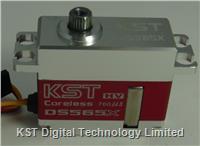 DS565X