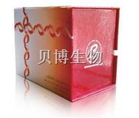 Propidium Iodide染色试剂盒 BB-4136
