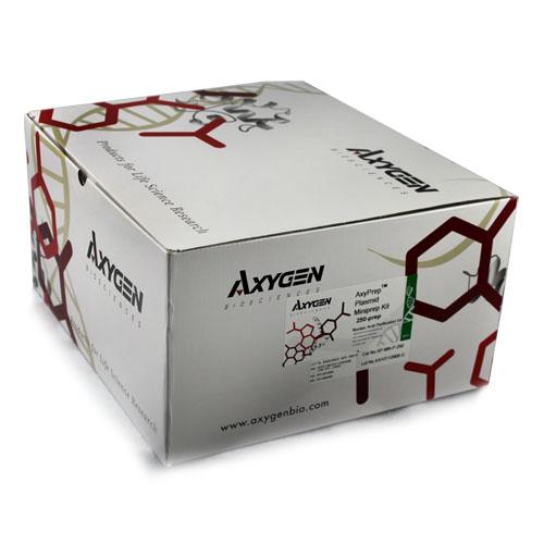 质粒小量制备试剂盒